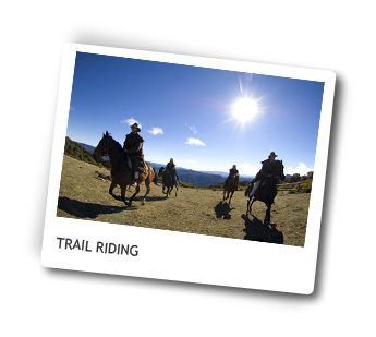 Horse Riding Package in Victoria